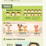 Když zaútočí alergie – infografika