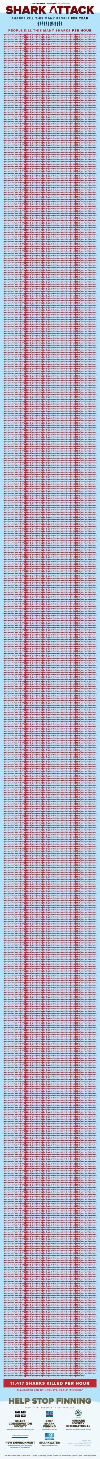 Počet lidí, které zabije žralok - infografika