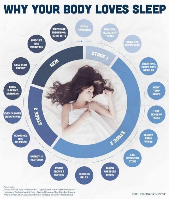 Proc vase telo miluje spanek - infografika
