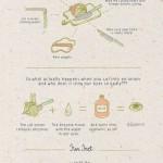 Jak nakrájet cibuli bez pláče – infografika