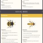 Ze života hmyzu… a jeho soužití s člověkem – Infografika