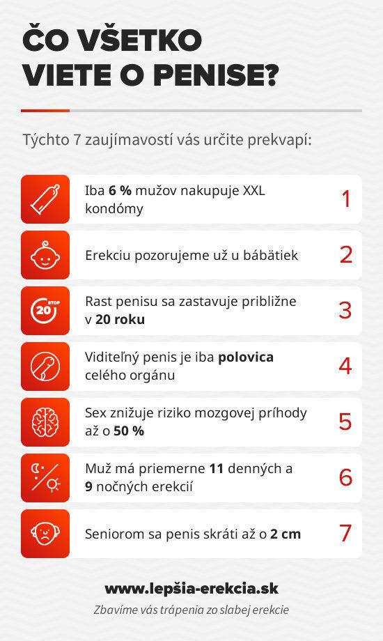 infografika_co_viete_o_penise