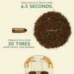 Kouření škodí zdraví… Fakt! – Infografika