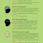 Jazyky a mozek: jak vyzrát na cizí řeči? – Infografika