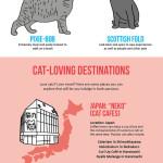 Svět (podle) koček – Infografika