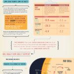 Jsou větší zlo cukry, nebo tuky? – Infografika