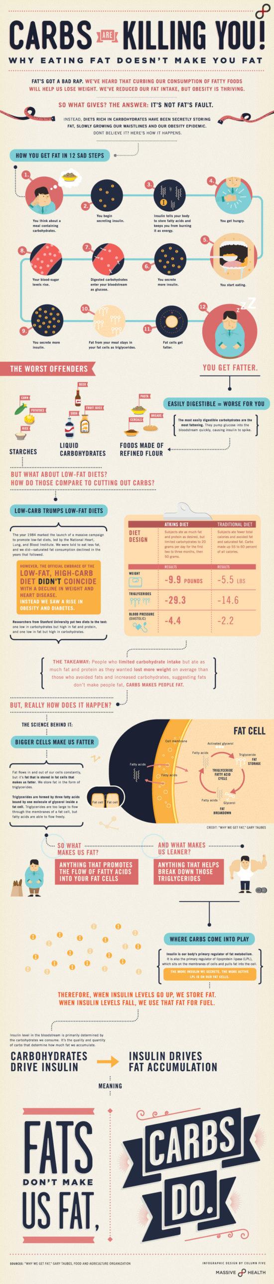 Zabíjí nás cukry, nebo tuky? – Infografika
