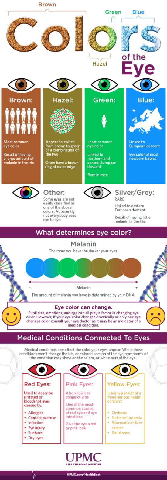 Co o vás prozradí vaše oči – Infografika