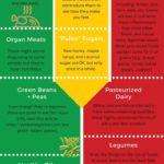 Paleo dieta – infografika