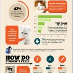 Upadá kvalita jazyka? – Infografika