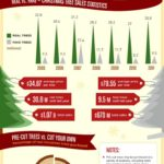 Historie vánočních stromků – infografika