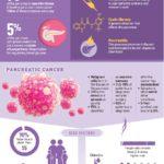 Vaše slinivka břišní – infografika