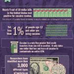 Co mají společného bakterie a kokain? Infografika